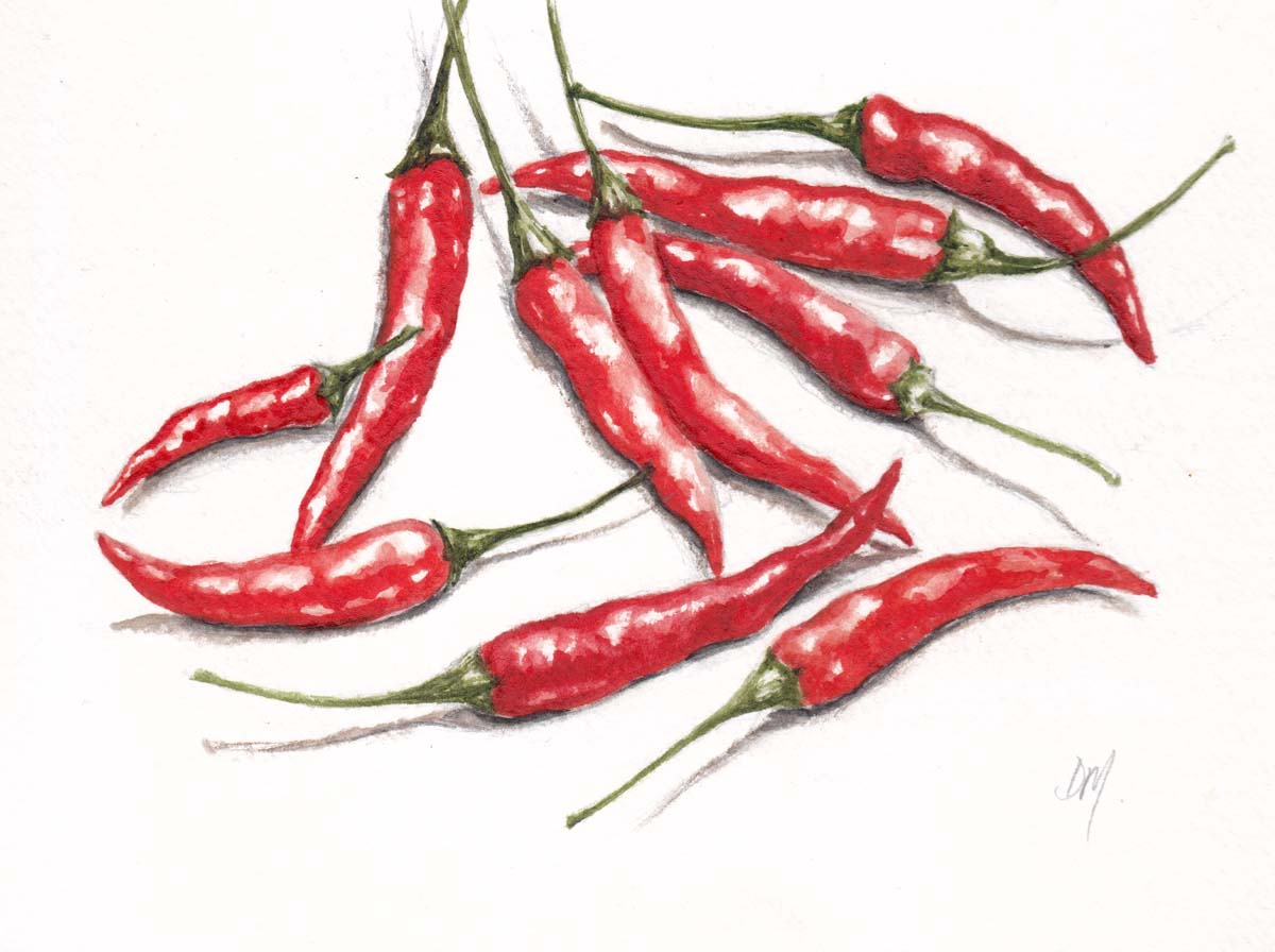 Hot Chili Pepper seeds